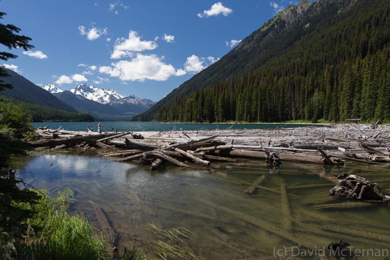 Duffy Lake View