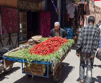 Morocco_Apr13_JML6743