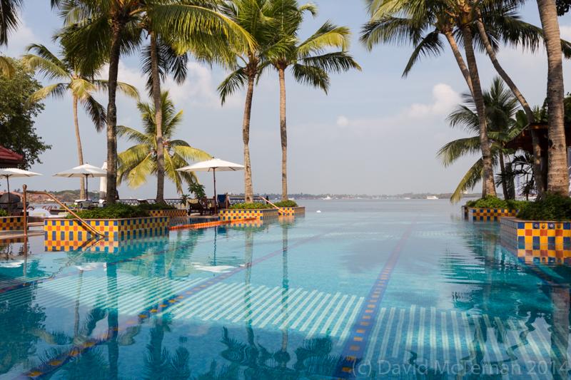 Taj pool view