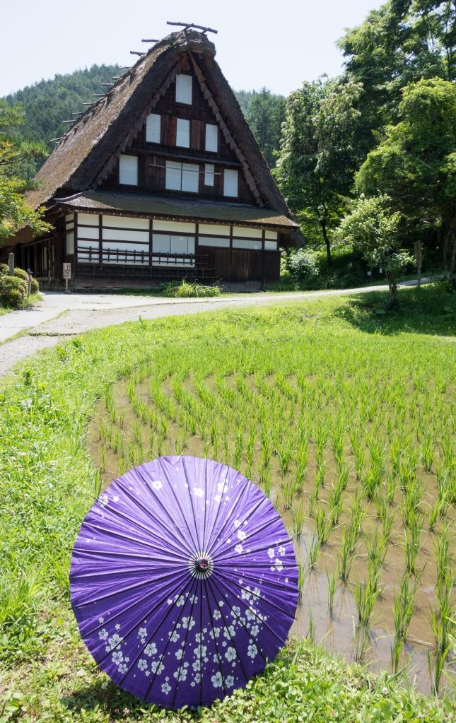 Blog_JapanJune2015__DSC0810
