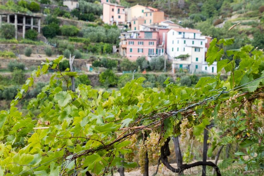 ItalySept2015__JML2011