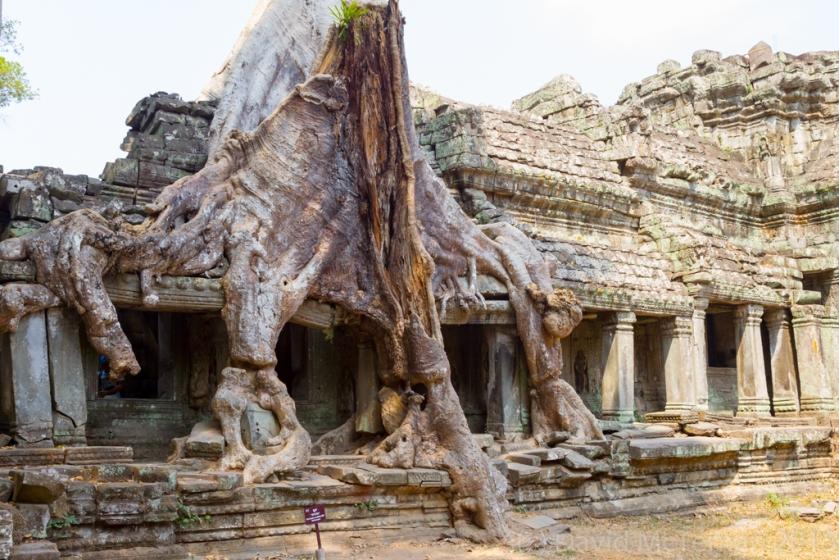 CambodiaBlog_07