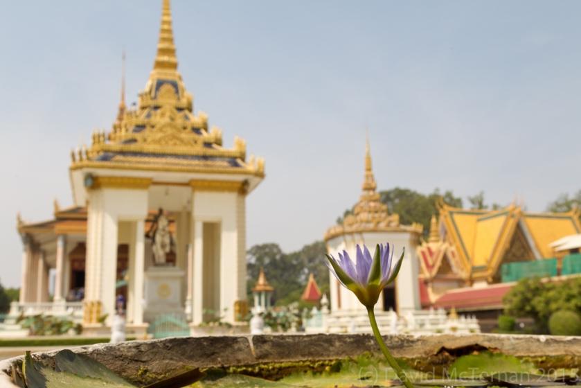 CambodiaBlog_53